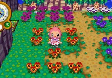 300本目の交配花