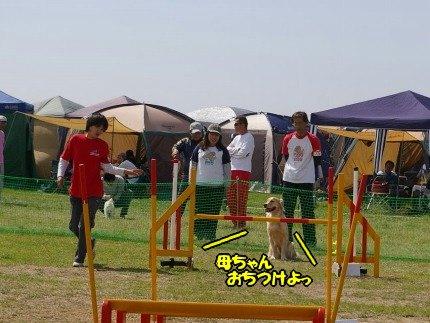 IMGP2084_20090420121147.jpg