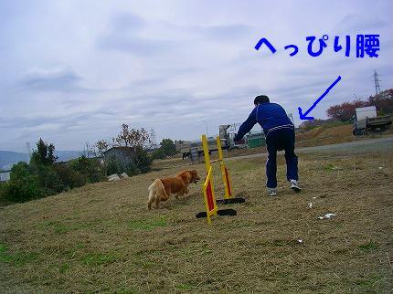 SANY0012_20081125215923.jpg