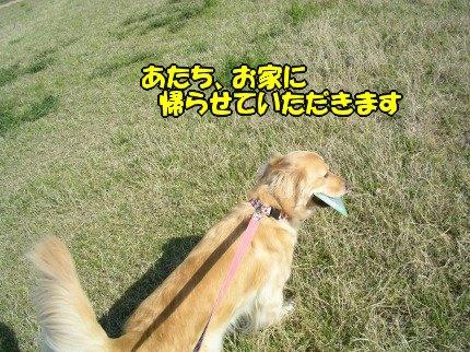 SANY0030_20090420183652.jpg
