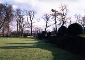 ウエスタンマナー庭木