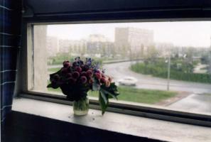 カーン大学寮の窓から