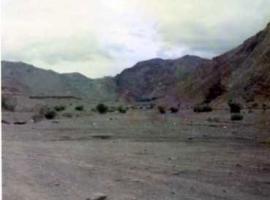 パキスタン砂漠地帯