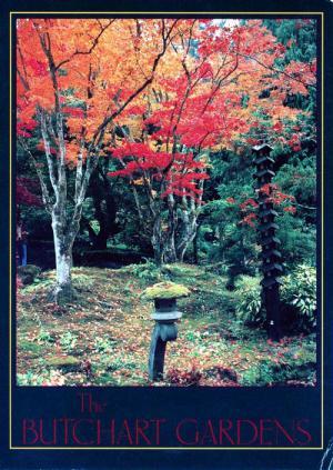 BG日本庭園絵葉書