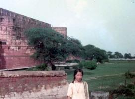 アグラ城外壁