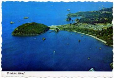 トリニダード島