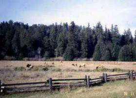 国立公園近く