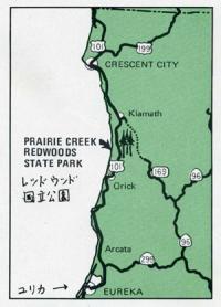 レッドウッド国立公園パンフより2