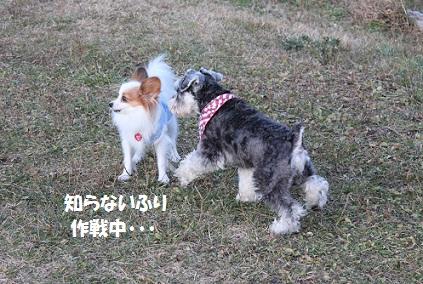b2011121027.jpg
