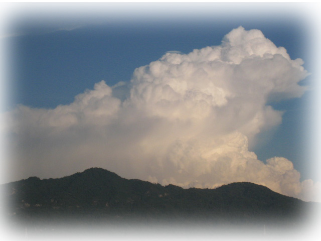 201134.jpg