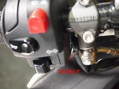 PC180316.jpg