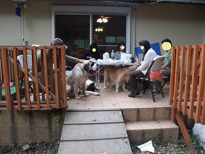 2009_1026sandanobetusou0098.jpg
