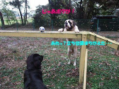 2009_1026sandanobetusou0131.jpg