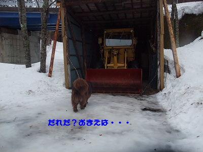 2010_0227takayama20061.jpg