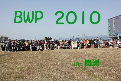 2010_0314BWP20100016.jpg