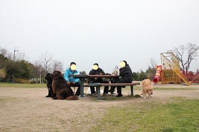 2010_0327yamadaike03270093.jpg