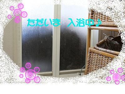snap_aqua0725_201033105114b.jpg