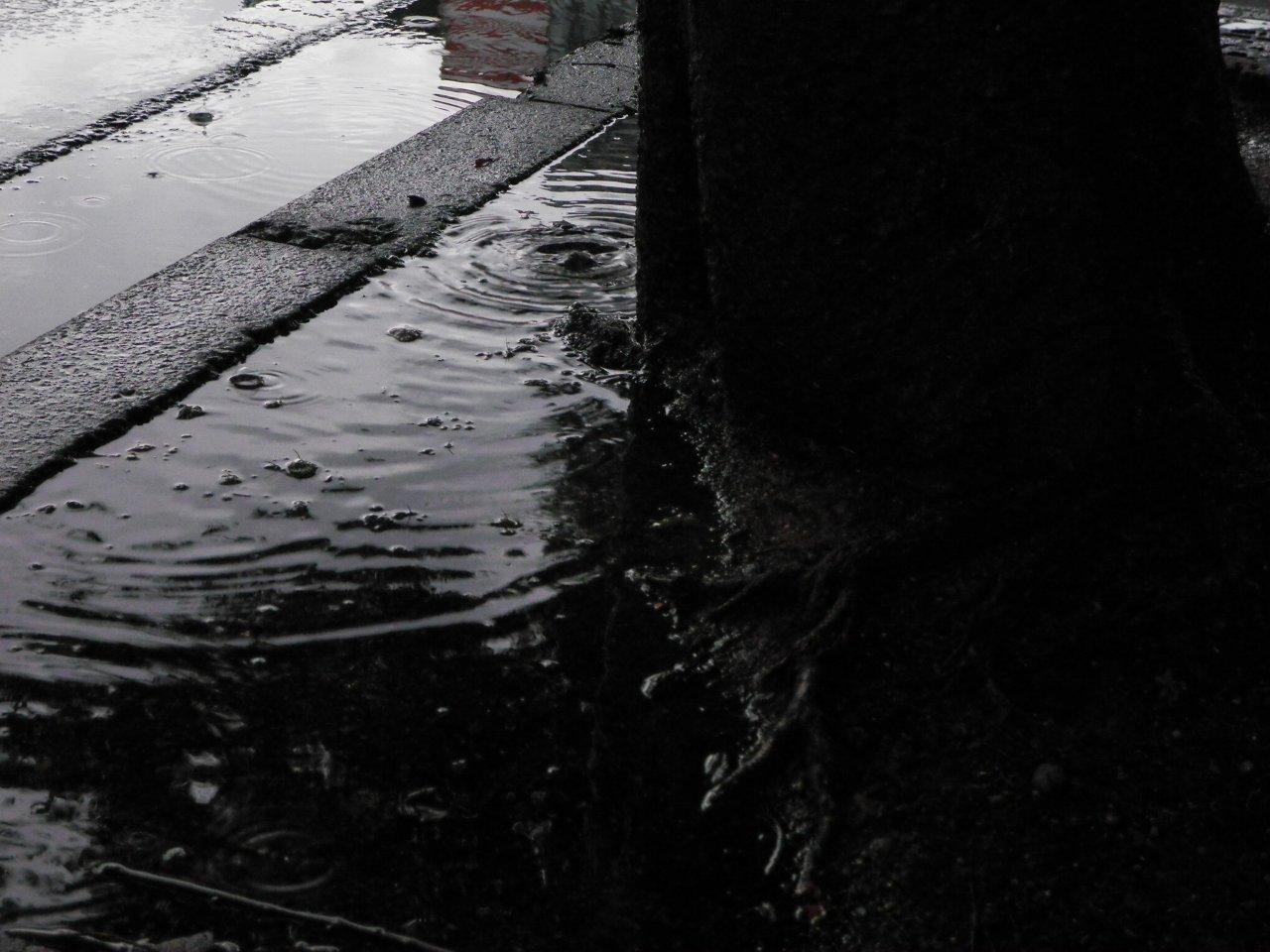 Monochrome10.jpg