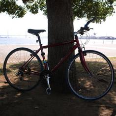 自転車写真