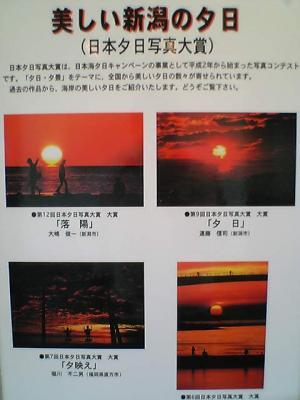 VFSH0113.jpg