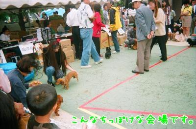 010_8_convert_20090118194044.jpg