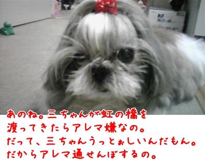 081026_190845_convert_20090209204134.jpg
