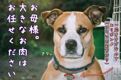 102_9A_convert_20081123072408.jpg