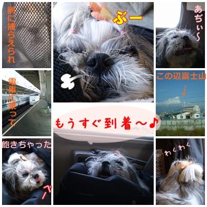2008-11-17-001.jpg