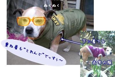 2008_1124_104222-PB240104_convert_20081124153756.jpg