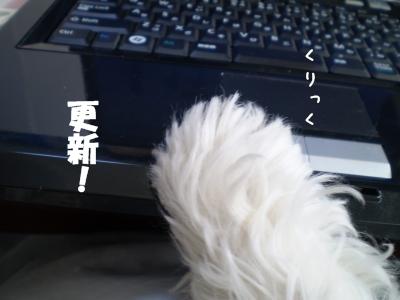 2008_1216_101902-PC160145_convert_20081216130533.jpg