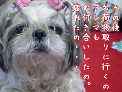 2008_1218_155732-PC180195_convert_20081218165658.jpg