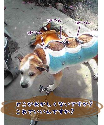 2009+0219+0926_convert_20090220163124.jpg