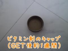 20090331112505.jpg