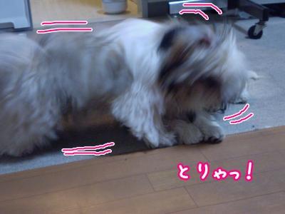 20090521201022.jpg
