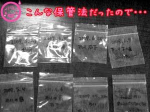 20090626114501.jpg