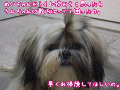 20090629185126.jpg