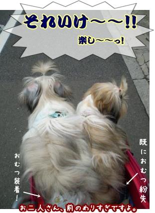 20090705164846.jpg