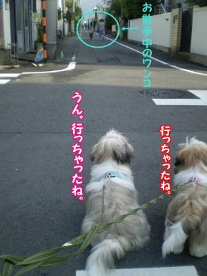 20090708180403.jpg