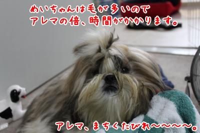 20090831193744.jpg