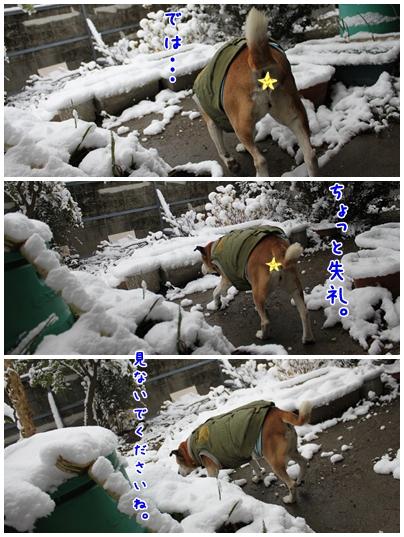 2010-01-01-04.jpg