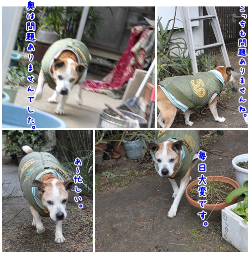 2010-01-03-04.jpg