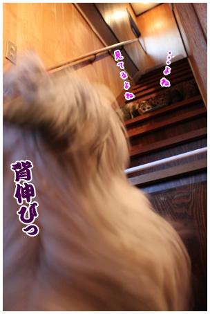 2010-01-04-04.jpg