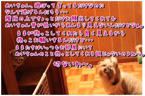 2010-01-05-02.jpg