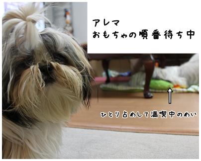 2010-01-07-06.jpg