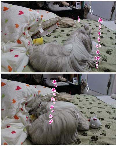 2010-01-08-07.jpg