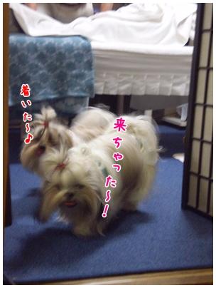 2010-01-09-02.jpg