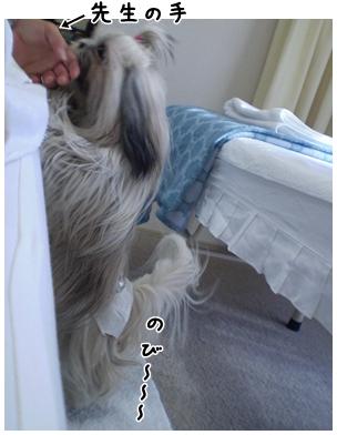 2010-01-09-05.jpg