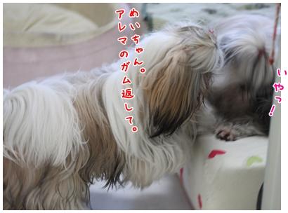 2010-01-10-03.jpg