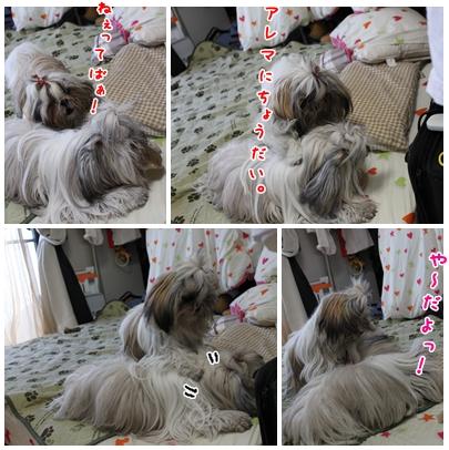 2010-01-10-04.jpg