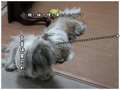 2010-01-12-02.jpg